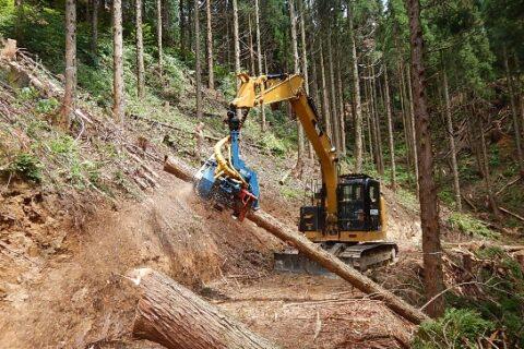 現場管理事務および山林調査(社会人経験者)