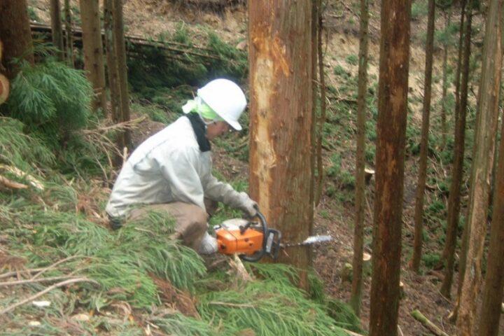 山林作業・木材チップ製造(加茂事業所)