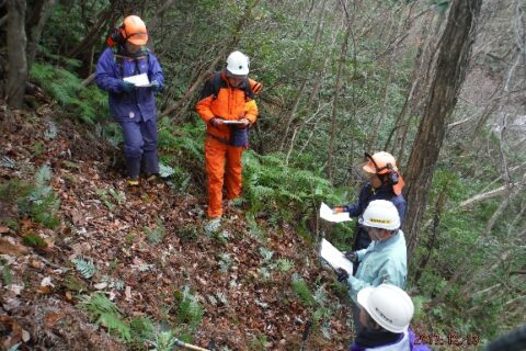 林業(山林調査)補助業務(正社員登用予定)